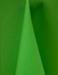 Rental store for NEON GREEN LINENS in Denver NC