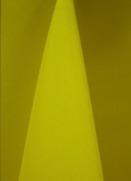 Where to rent NEON YELLOW LINENS in Denver NC