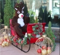Where to rent SANTA SLEIGH in Denver NC
