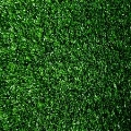 Where to rent GREEN ASTRO TURF-SQFT in Denver NC